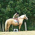 Jeux équestres manchots - parcours de pleine nature après-midi (158)