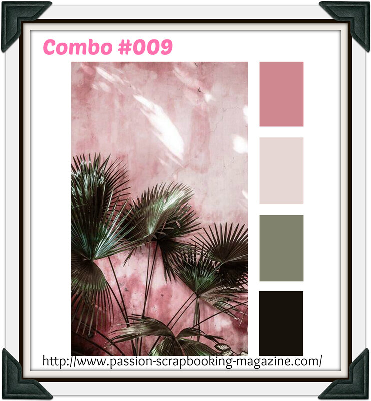COMBO #009 juin 2019