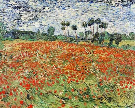 field_of_poppies