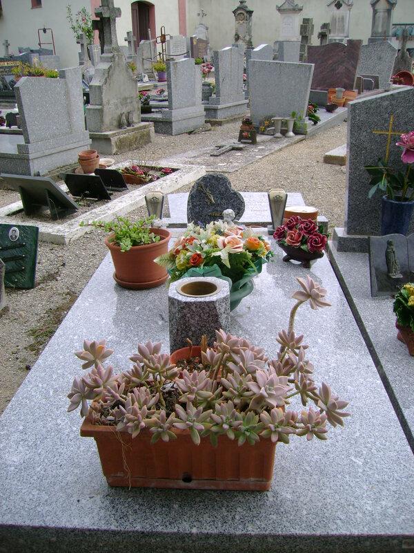 172 - Tombe de la famille Guiol-Rubis
