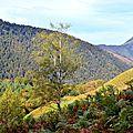 Les Monts d'Arette...