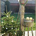 Noël au jardin #fin
