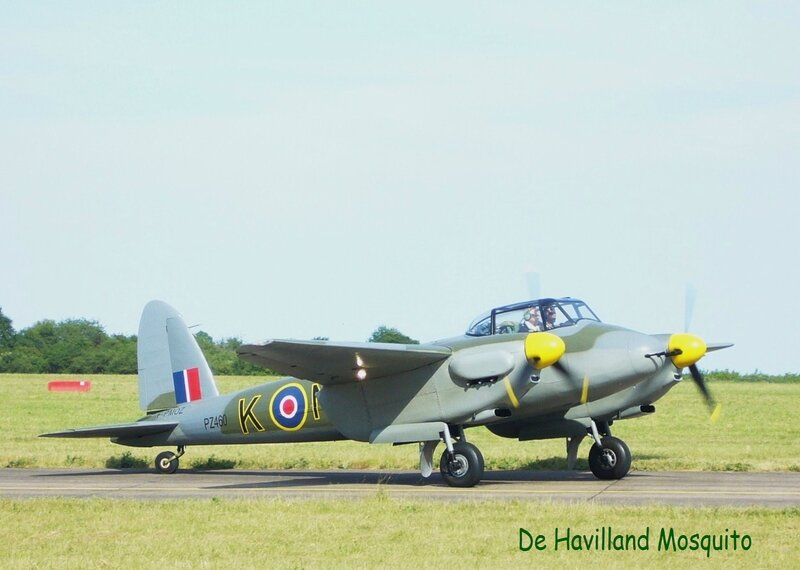 D H Mosquito
