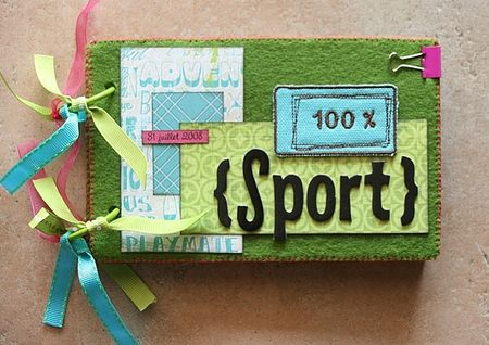 mini_album_100__sport_couv