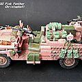 Land Rover SAS Pink Panther PICT4145