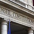 Le conseil constitutionnel pour l'immigration de masse