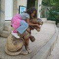 Promenade au Zoo