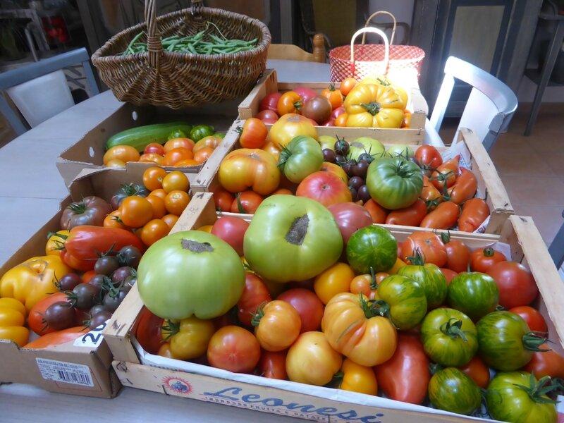 15-tomates (10)