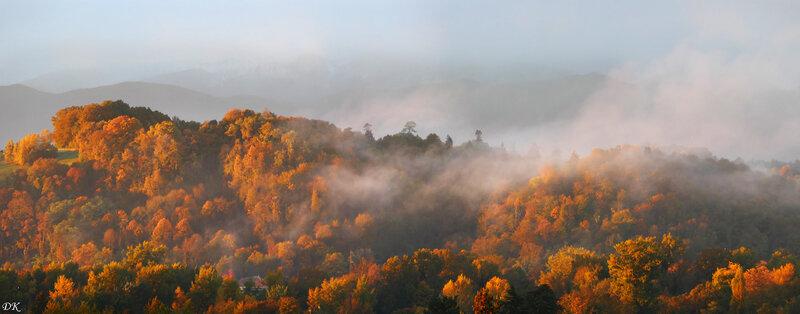 Blandices d'automne