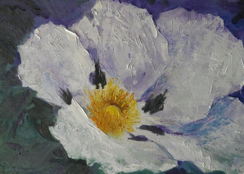 Huile - Fleur