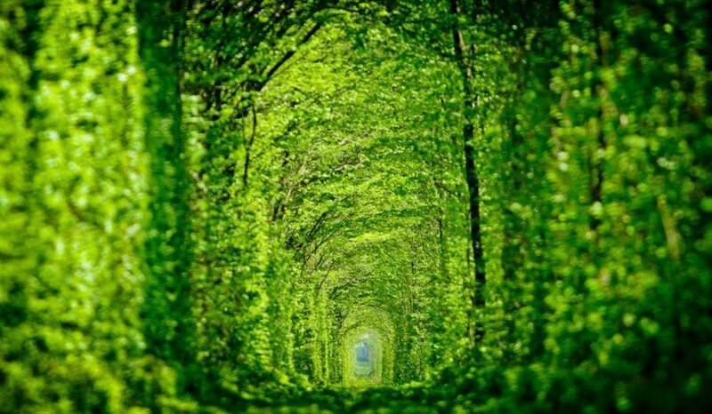 tunnel-of-love-940x548