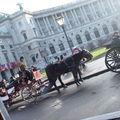 le palais du Hofburg