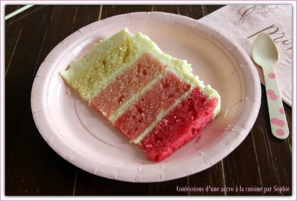 Pink Ombre Cake 005