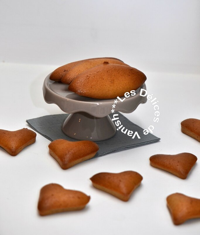 Financiers, tm5, nouveau thermomix, flexipan, demarle