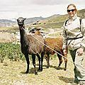 Les lamas et moi