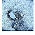 Coeur pola_1491035938147