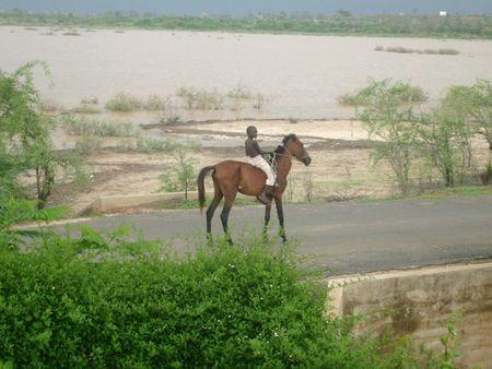 gar_on___cheval_2