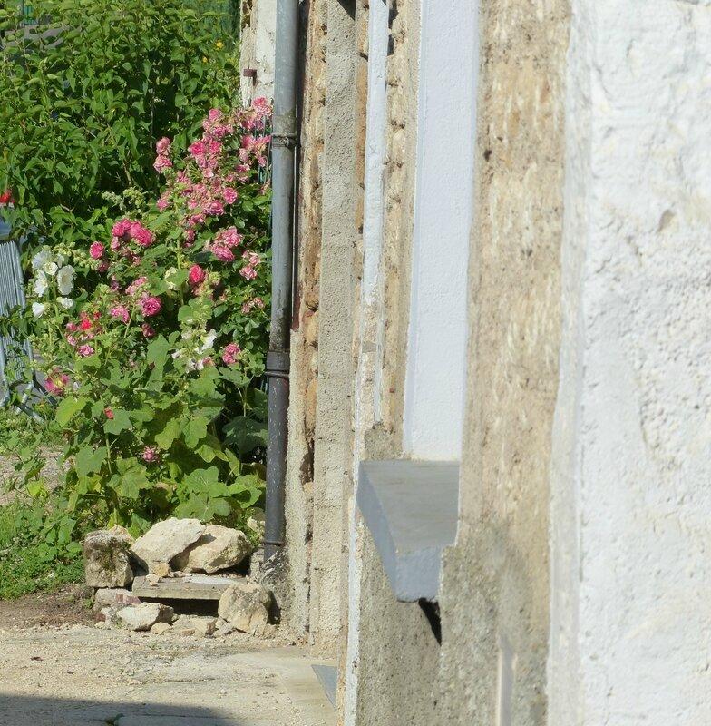 mont devant sassey montmedy (74)