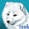 Avoir la foi c'est croire en quelque chose - isaki