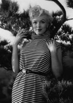 1954-PalmSprings-HarryCrocker_home-by_ted_baron-striped-011-2
