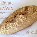 Levain naturel et pain complet au levain aux 4 céréales