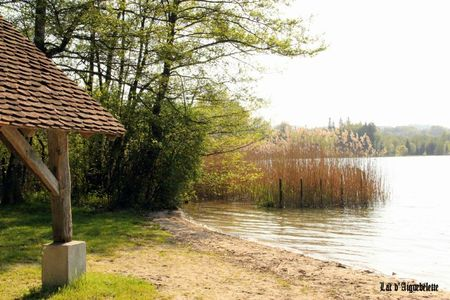 lac d'aiguebelette 3