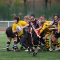 36IMG_0814T