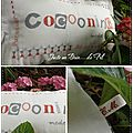 Coconing lili point