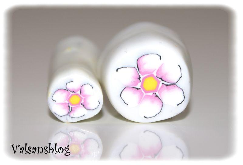 canes perles 31 mars 2010 005