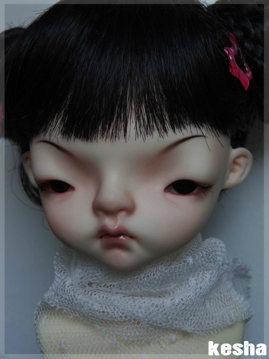 domadoll-cooki8