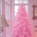 sapin rose4