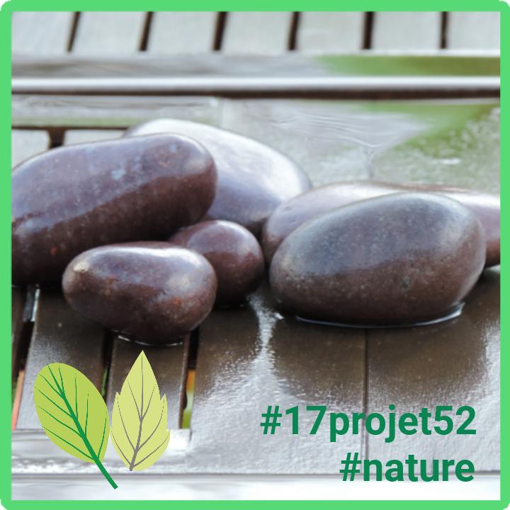 14 projet52 2017 - Nature
