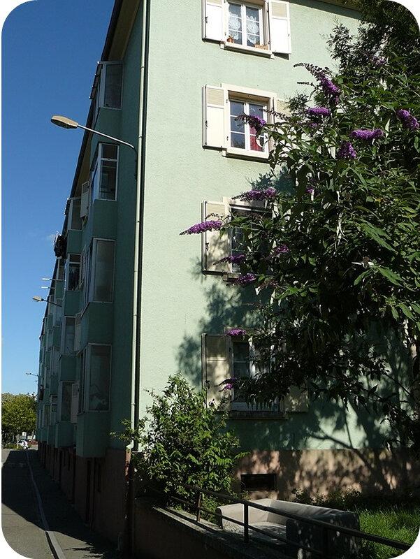 Quartier Drouot - Tout Baigne25