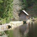 westweg... Glaswaldsee. cabane en équilibre sur l'eau