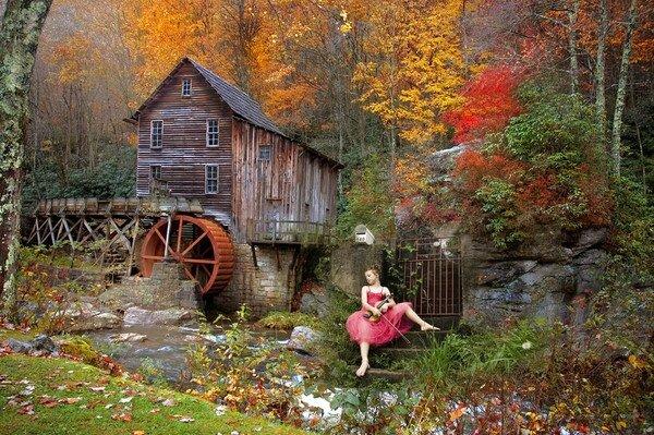 Paysage d'automne3