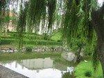 Balade___Mervent_et_Vouvant_village_aux_peintres__et_zoo_ao_t_07_002