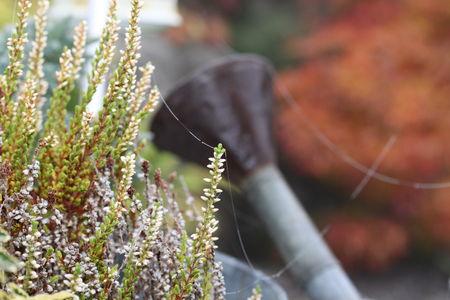 octobre2009_090