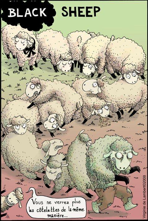 black_sheep_copie