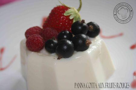 a_panna_cotta_fruits_rouges_2