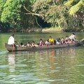 backwaters, bus scolaire