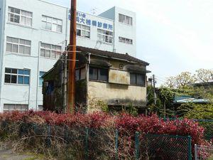 Canalblog_Tokyo03_18_Avril_2010_020
