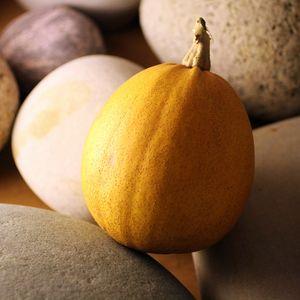 petite citrouille jaune