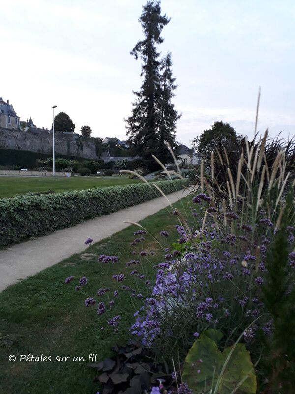 jardin CG1