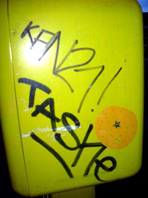 tashe orange