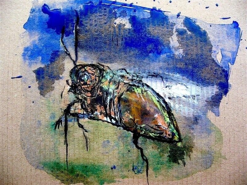 insecte sur carton 6