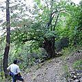 21 - 0221 - spassighjata à caracutellu - 17 aostu 2007