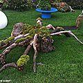 Une souche et ses racines évoquent une araignée (FolieFlore 2013 Mulhouse)