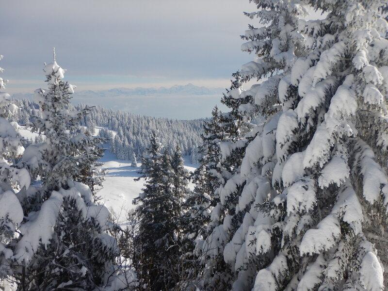 Coucou au Mont-Blanc (au fond)