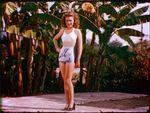 1945_08_bikini_birds_hotel_cap_1