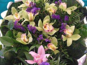 March__aux_fleurs___Nice_12